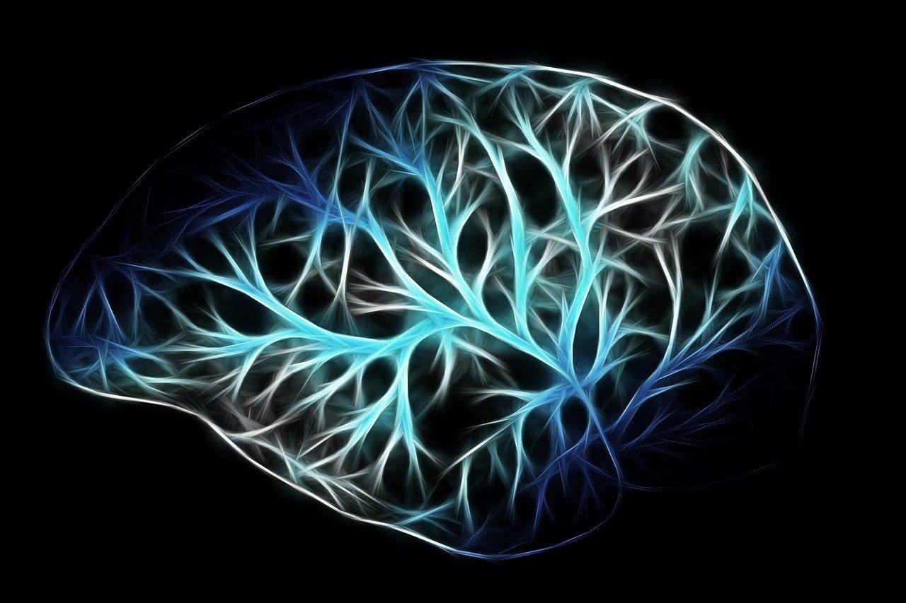 Neuropotenziamento: cosa, come e perché